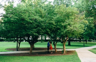 Couple Kissing while underneath trees' canopies